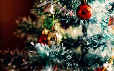 Navigating the Holiday Season